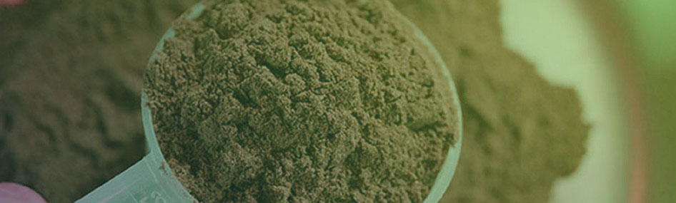 Learn The Many Benefits of Kratom